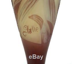 Antiquité Galle Art Français Camée Art Vase En Verre Fleurs Détaillées Motif Floral 5 15/16