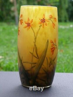Daum Nancy Art Nouveau Splendid Cameo Vase Fleurs Décor