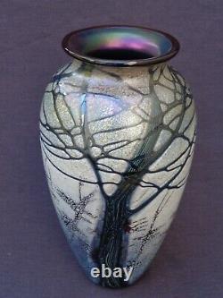 Rick Satava Mount Shasta Vase En Verre D'art 7
